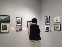 Gutstein Gallery, US